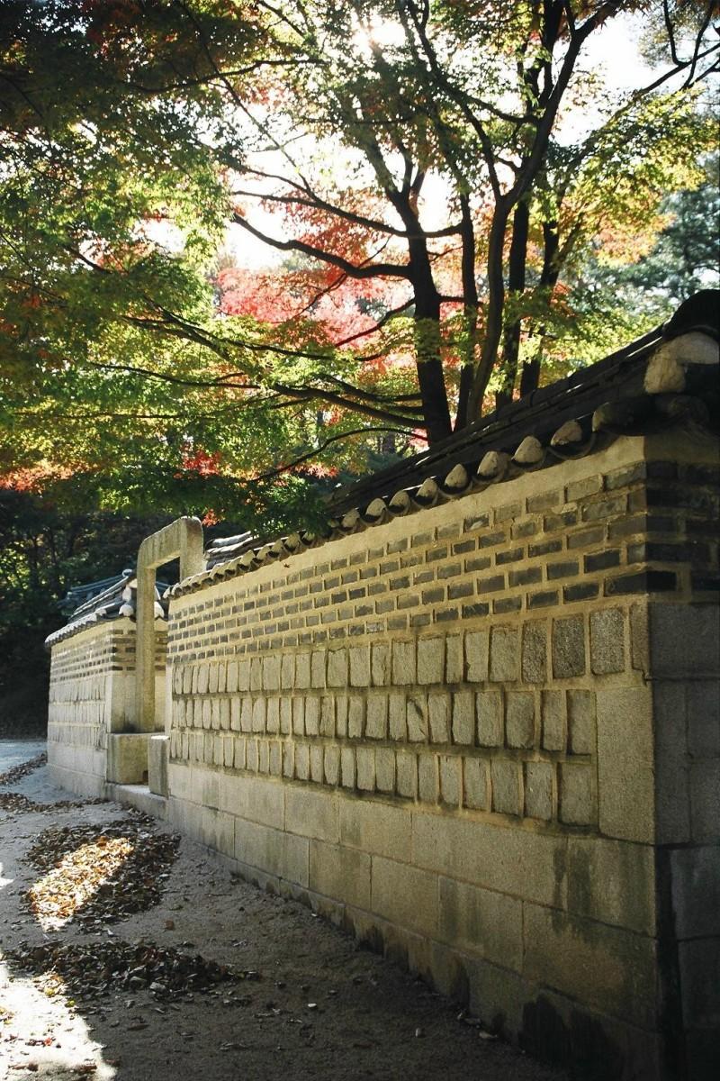 Palace grounds, Changdeokgung, Seoul, Korea.