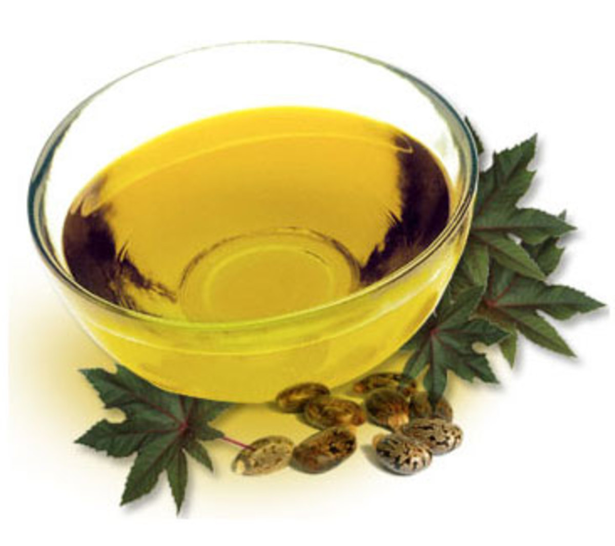 Castor Oil: Home Remedies for Beauty and Health Purposes
