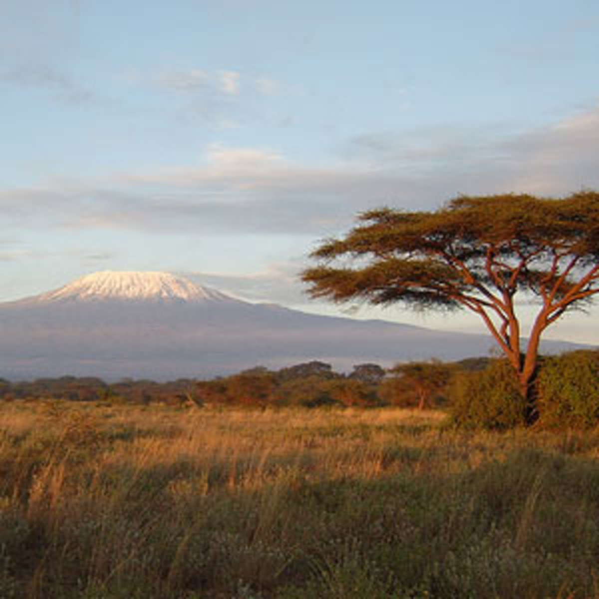 Kenyan game reserve with Mt Kilamanjaro (in Tanzania) in the distance. Kilamanjaro is 3 degrees south of the equator.