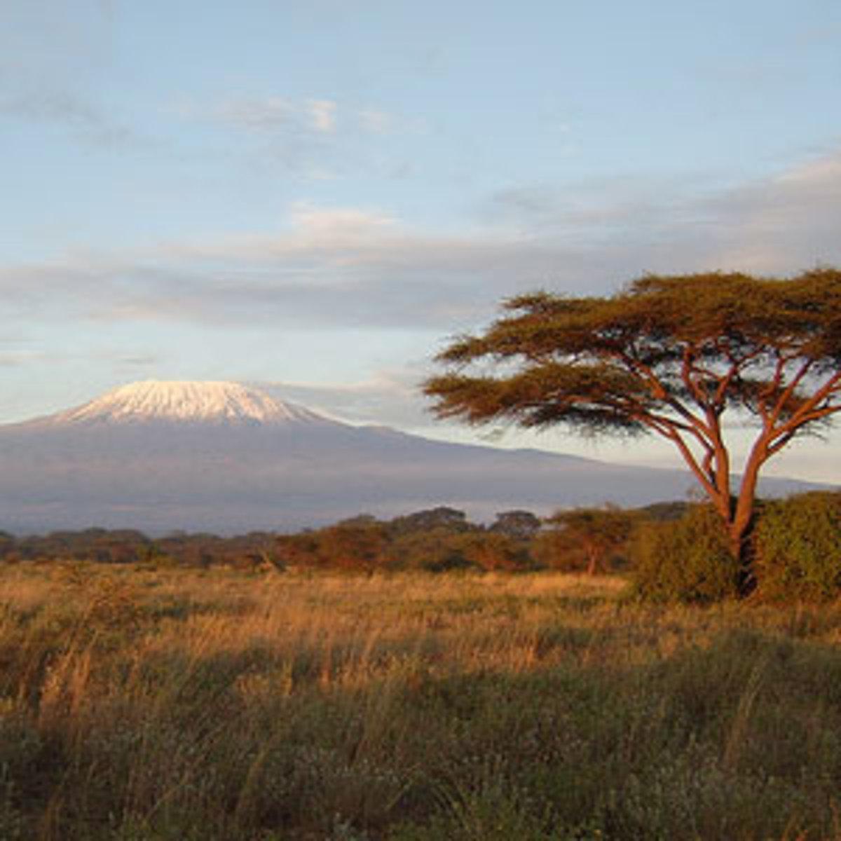 Kenyan game reserve with Mt Kilamanjaro (in Tanzania) in the distance. Kilamanjaro is 3 degrees south of the equator.