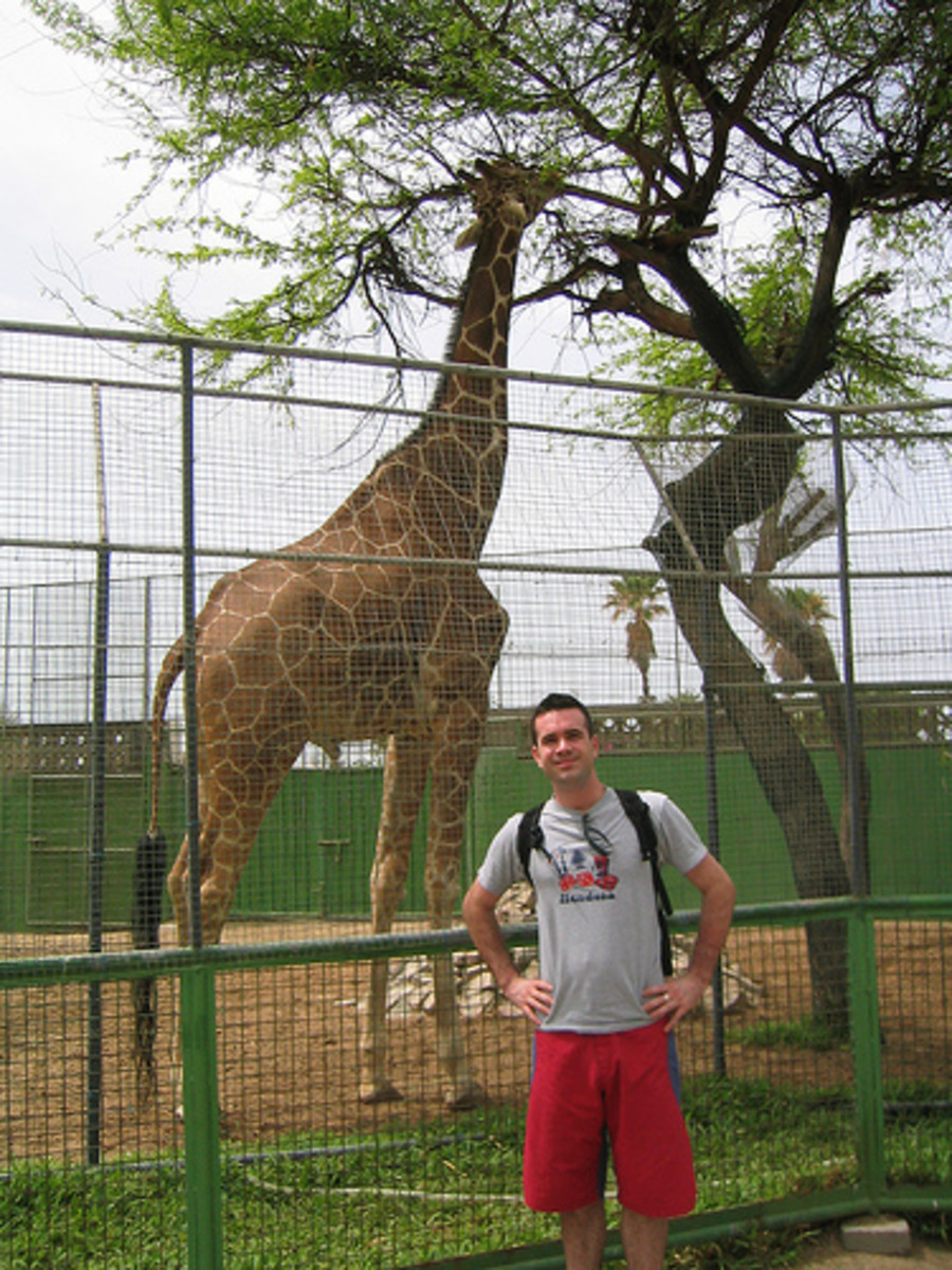 Dubai Zoo