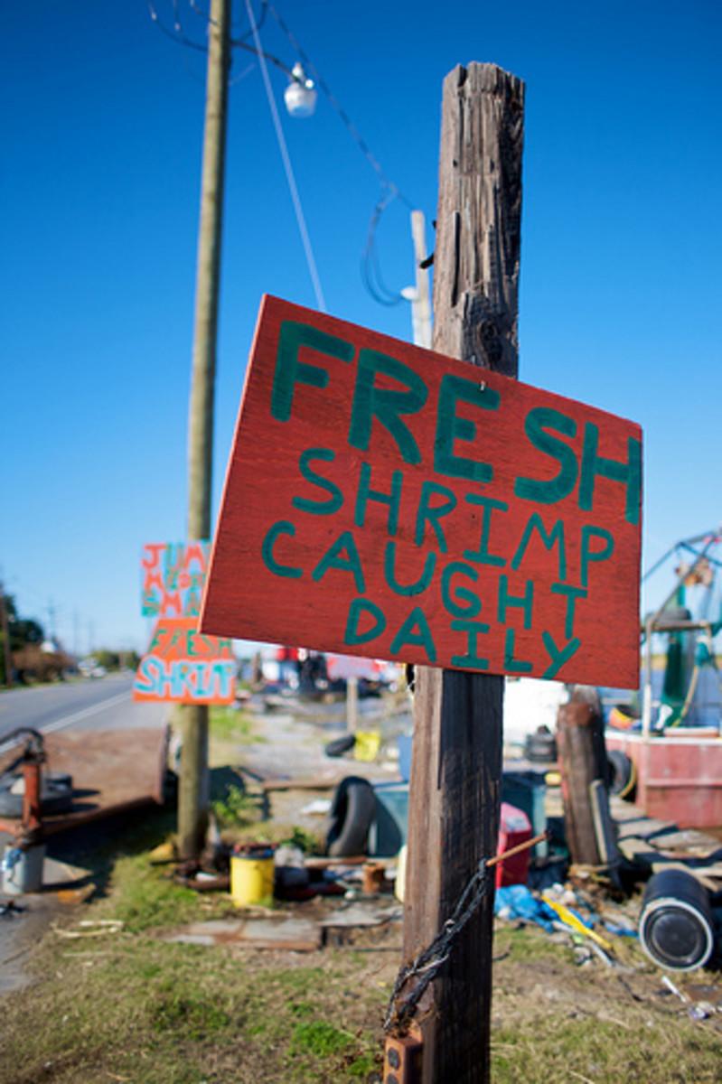 Always buy the freshest shrimp you can!