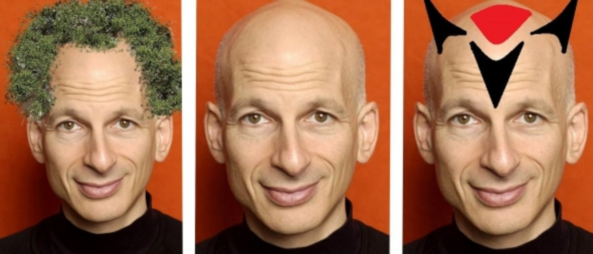 Seth Godin, founder of Squidoo, with a  Cool Chia Pet-style hairdo courtesy, and with much thanks for permission to use, goes to the