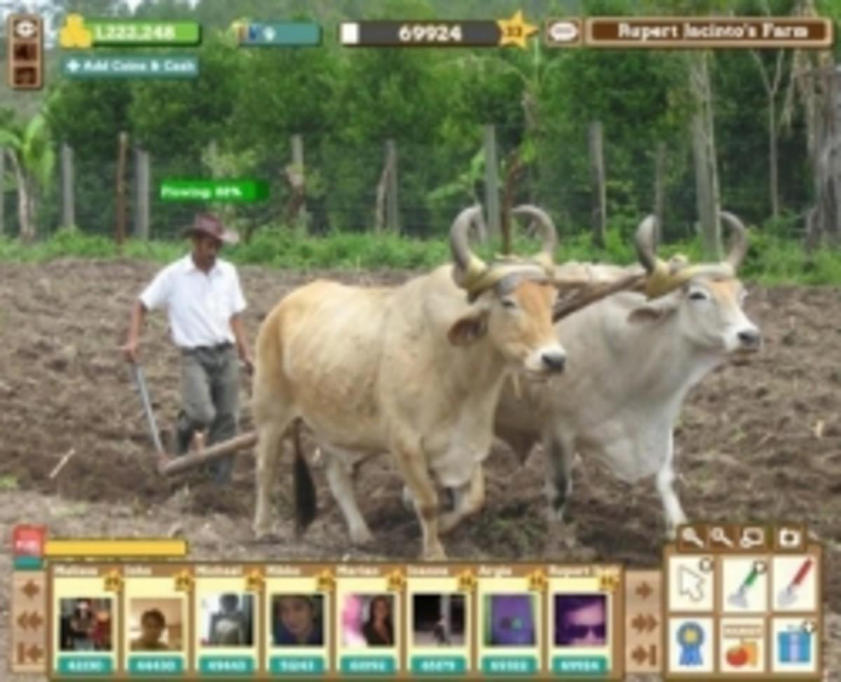 Funny Facebook / Farmville Picture