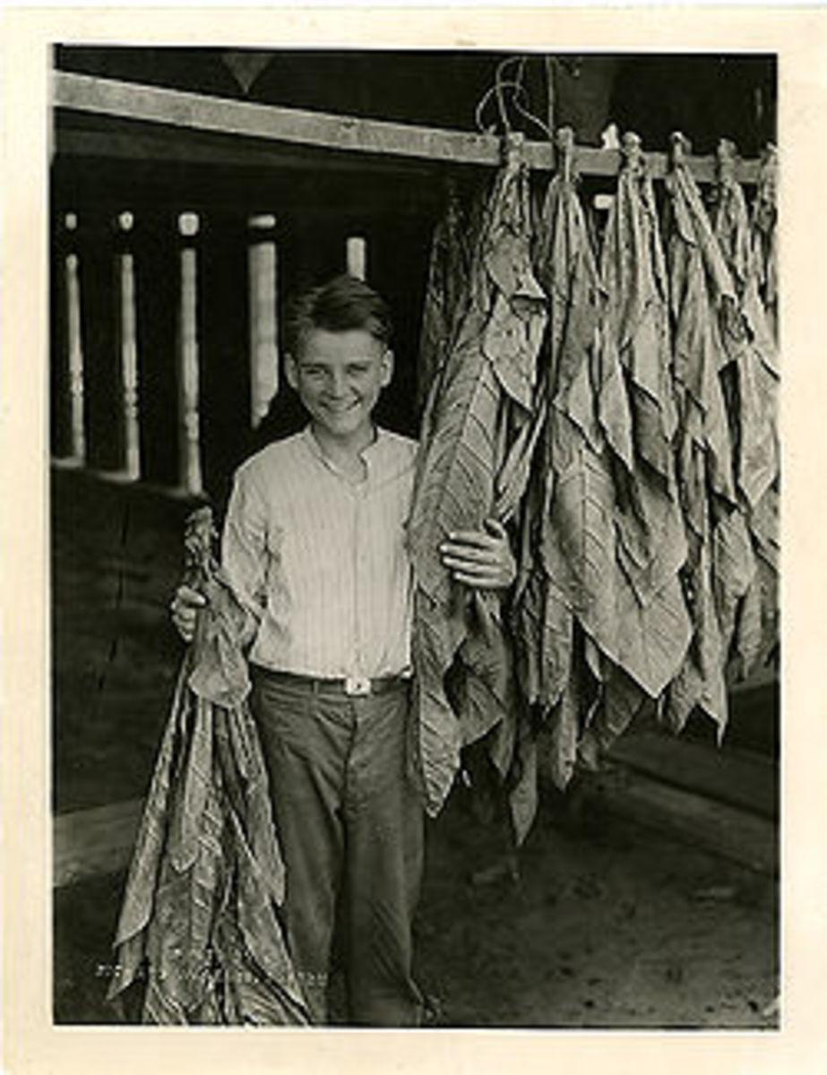 Calvin Coolidge Junior (1908-24)