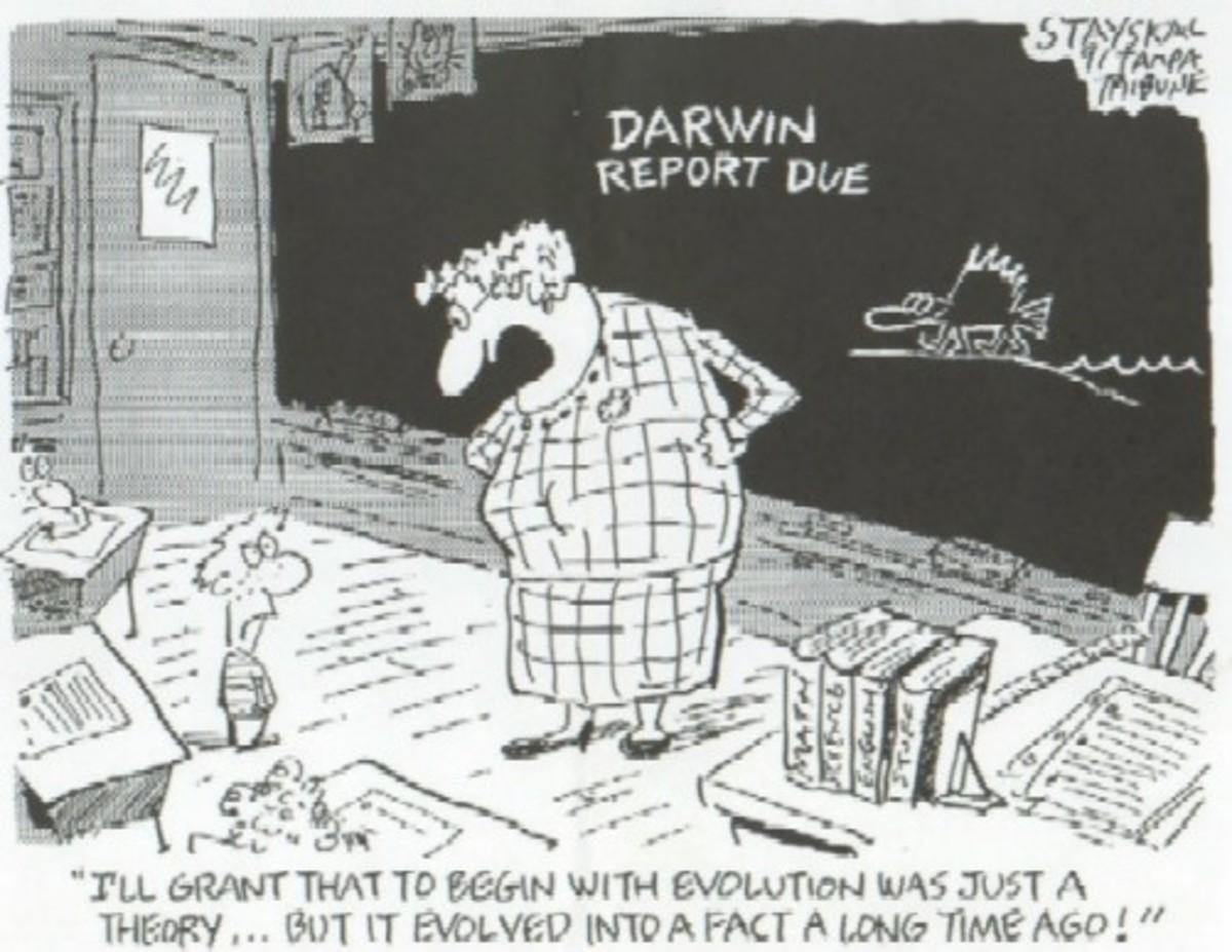 darwin-and-evolution