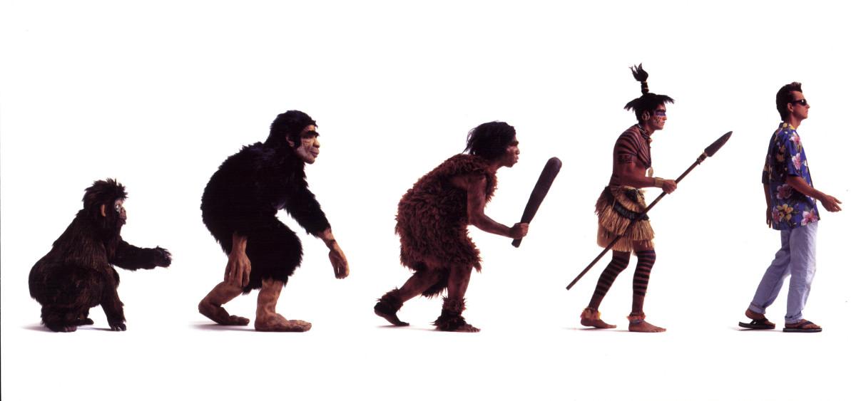ORIGIN OF MAN ACCORDING TO DARWINISM