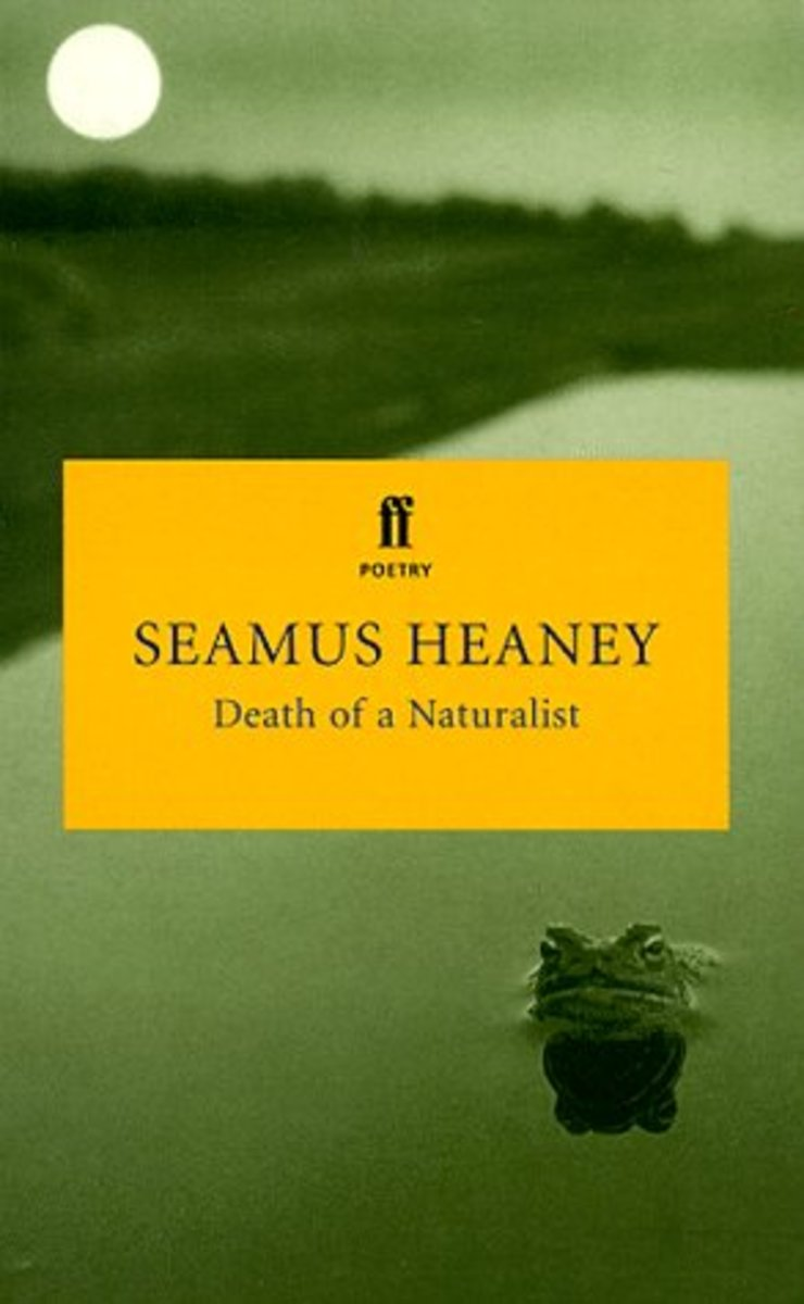 north by seamus heaney analysis