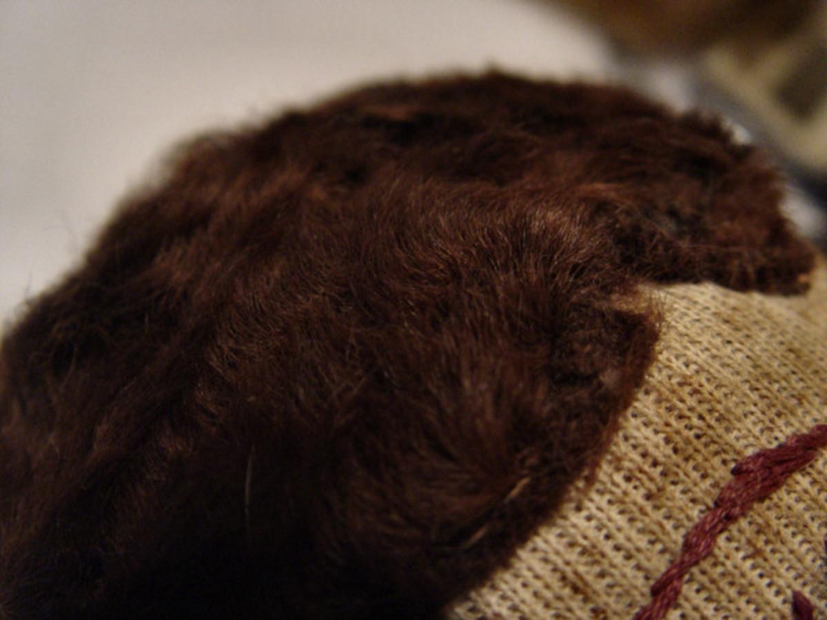 Rag Doll Hair