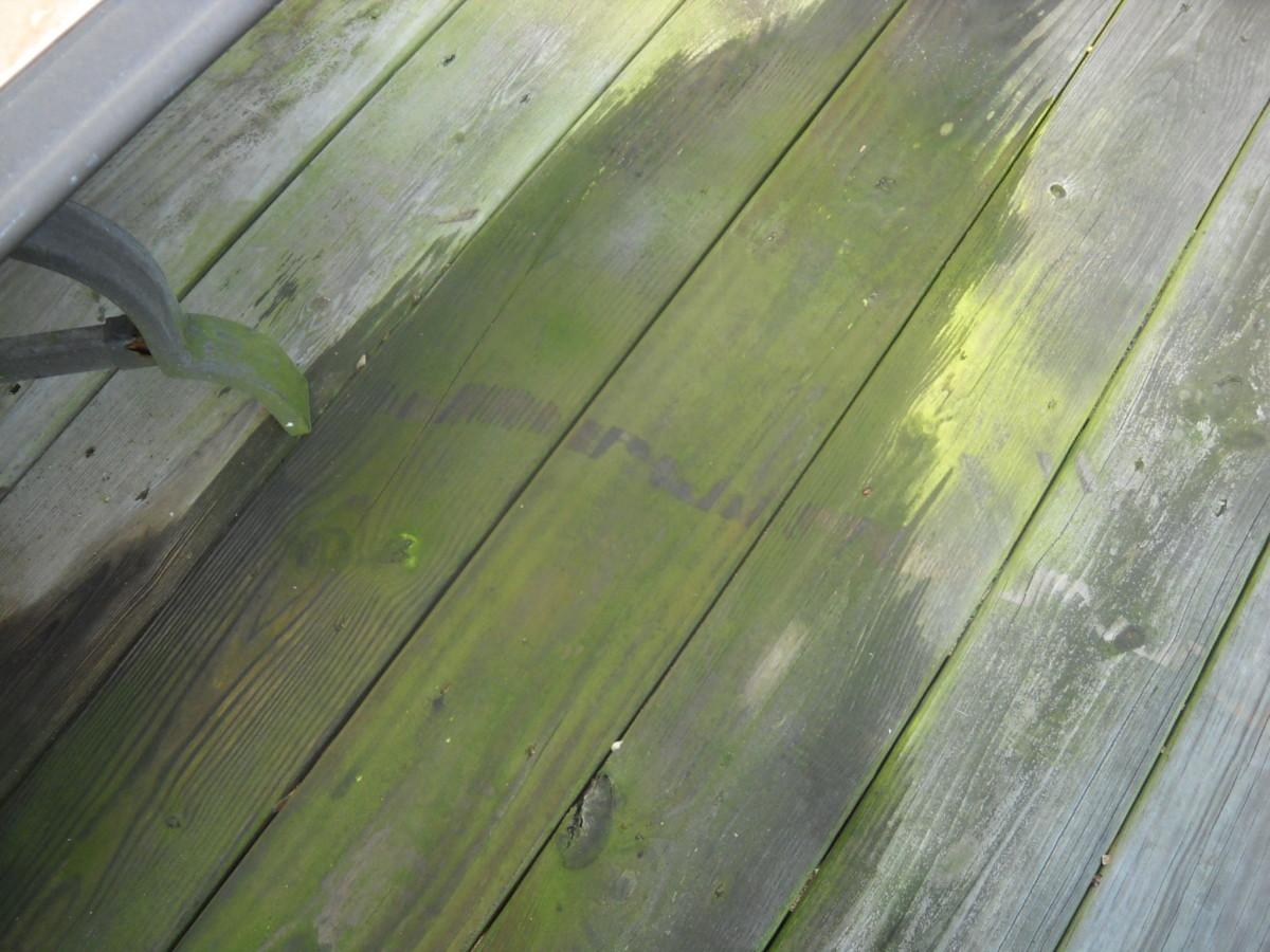 Moss wooden deck.