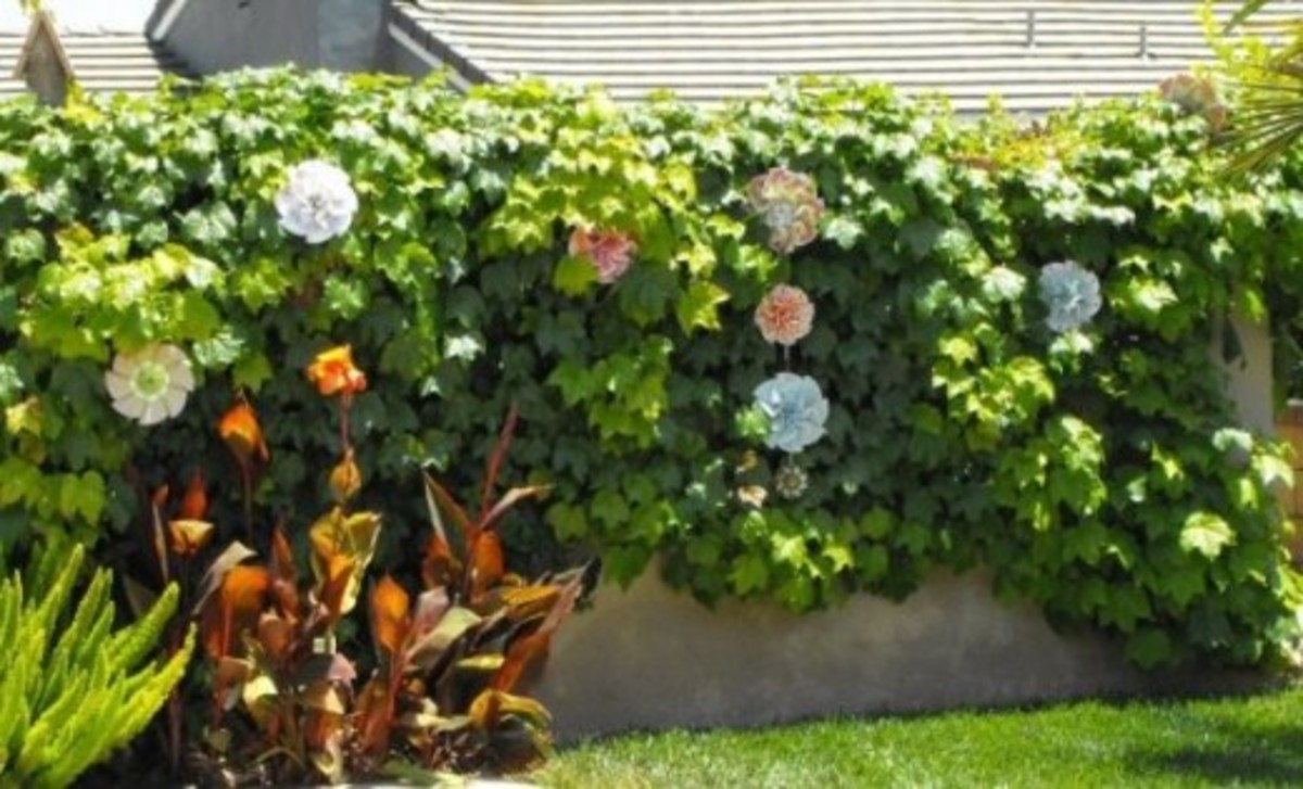 Large Paper Rosettes for Garden or Patio