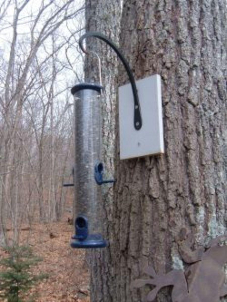 hanging-wild-bird-feeders