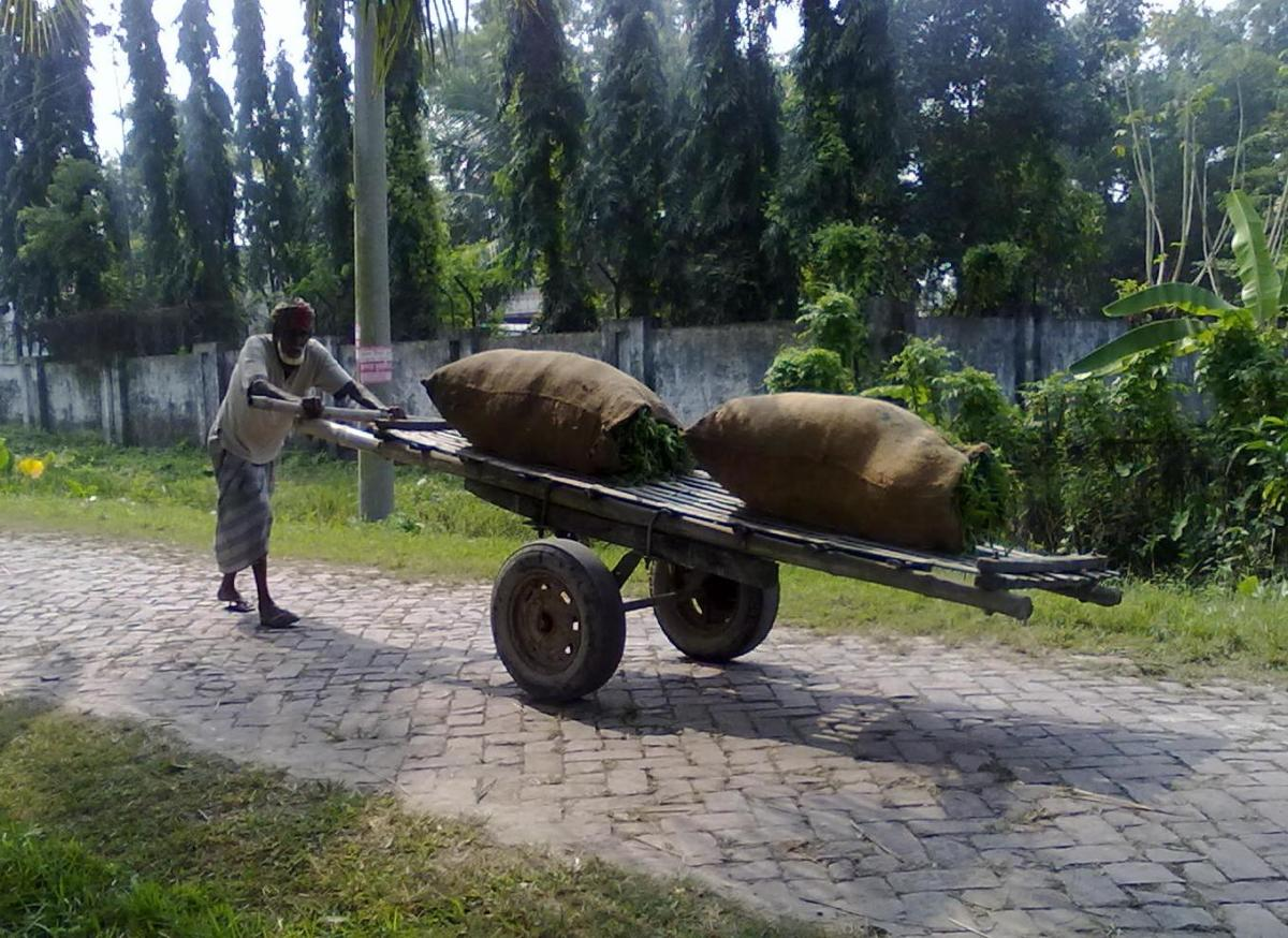 A man push a cart for transporting goods