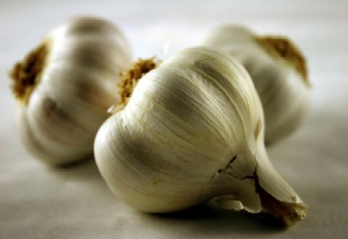 Garlic is anti-fungal.