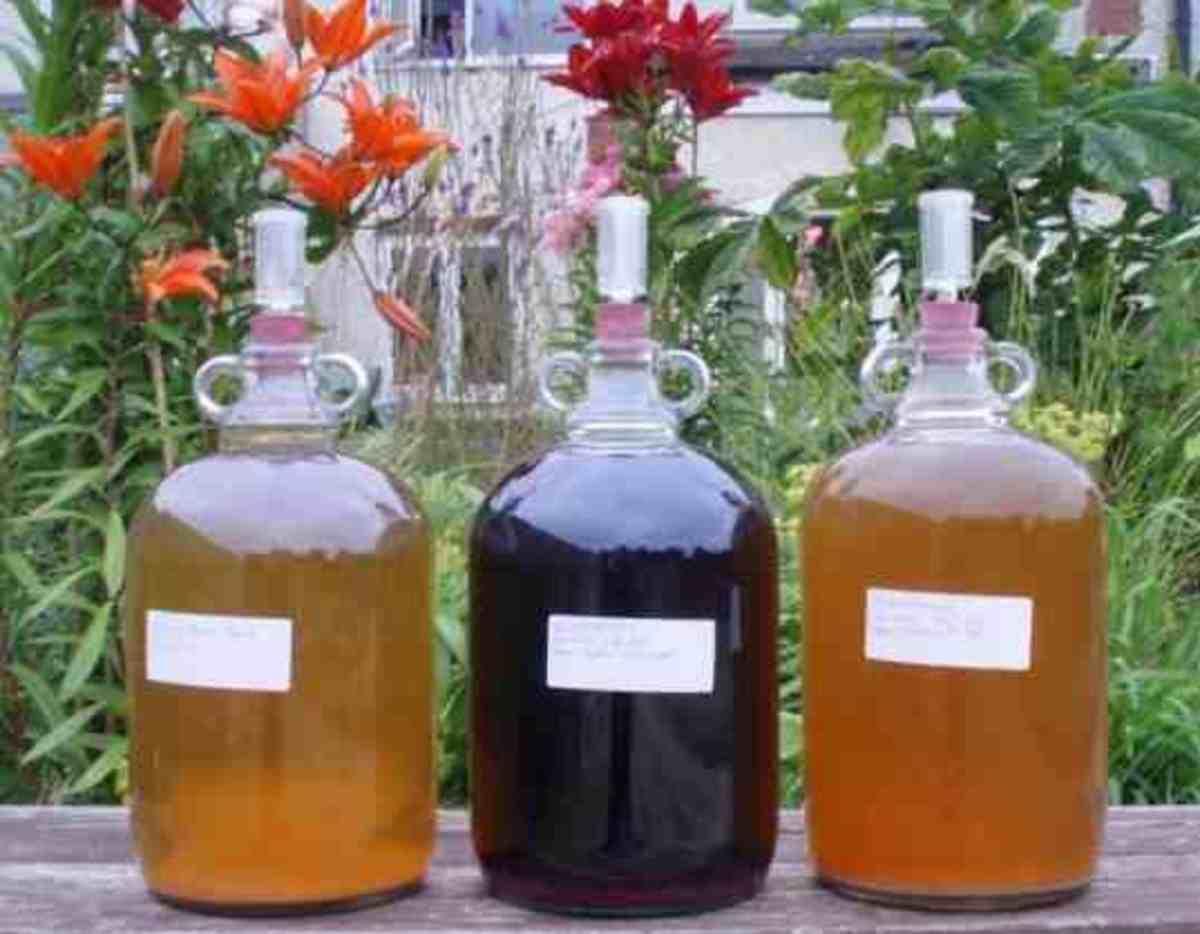 Elderflower Wine Rowan and Elderberry
