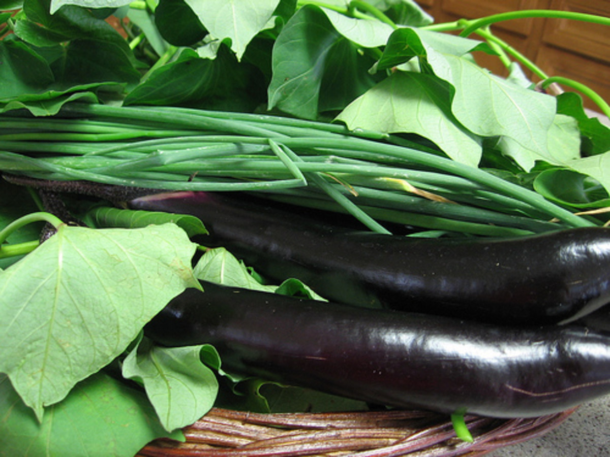 Kangkong Leaves and Eggplant (Photo Credits: Taga-Luto Flicker)