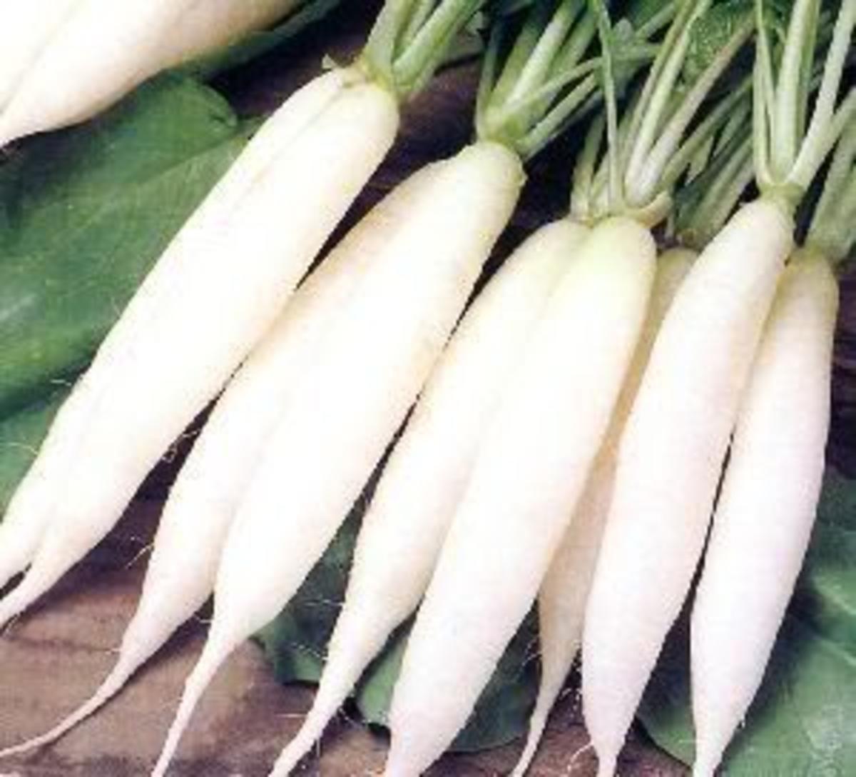 Labanos or White Radish (Photo Credit: misspaddy photobucket)