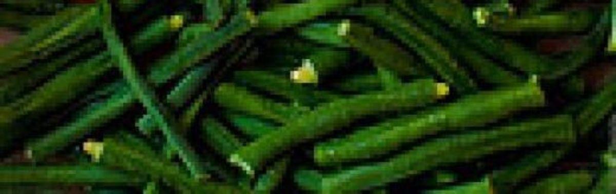 Sitaw or Long String Bean