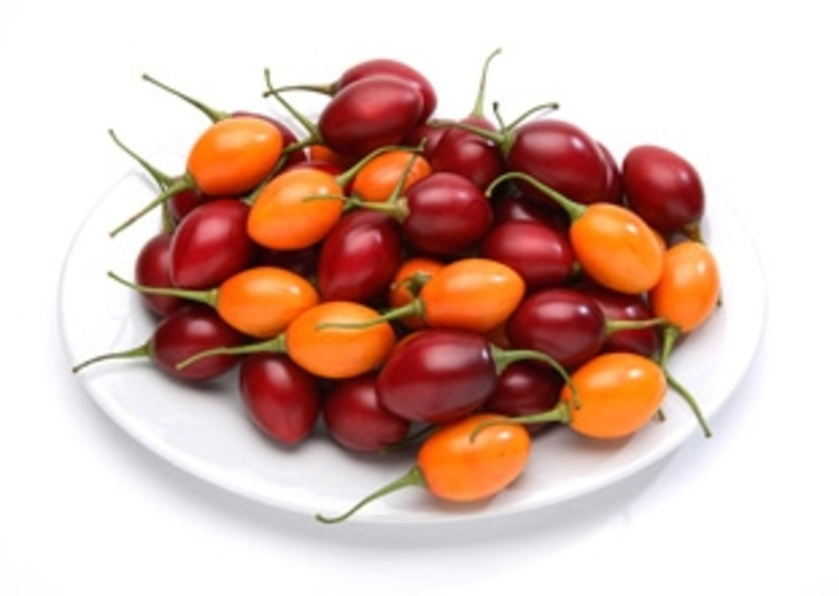 Tamarillos are available in red, purple and yellow varieties.