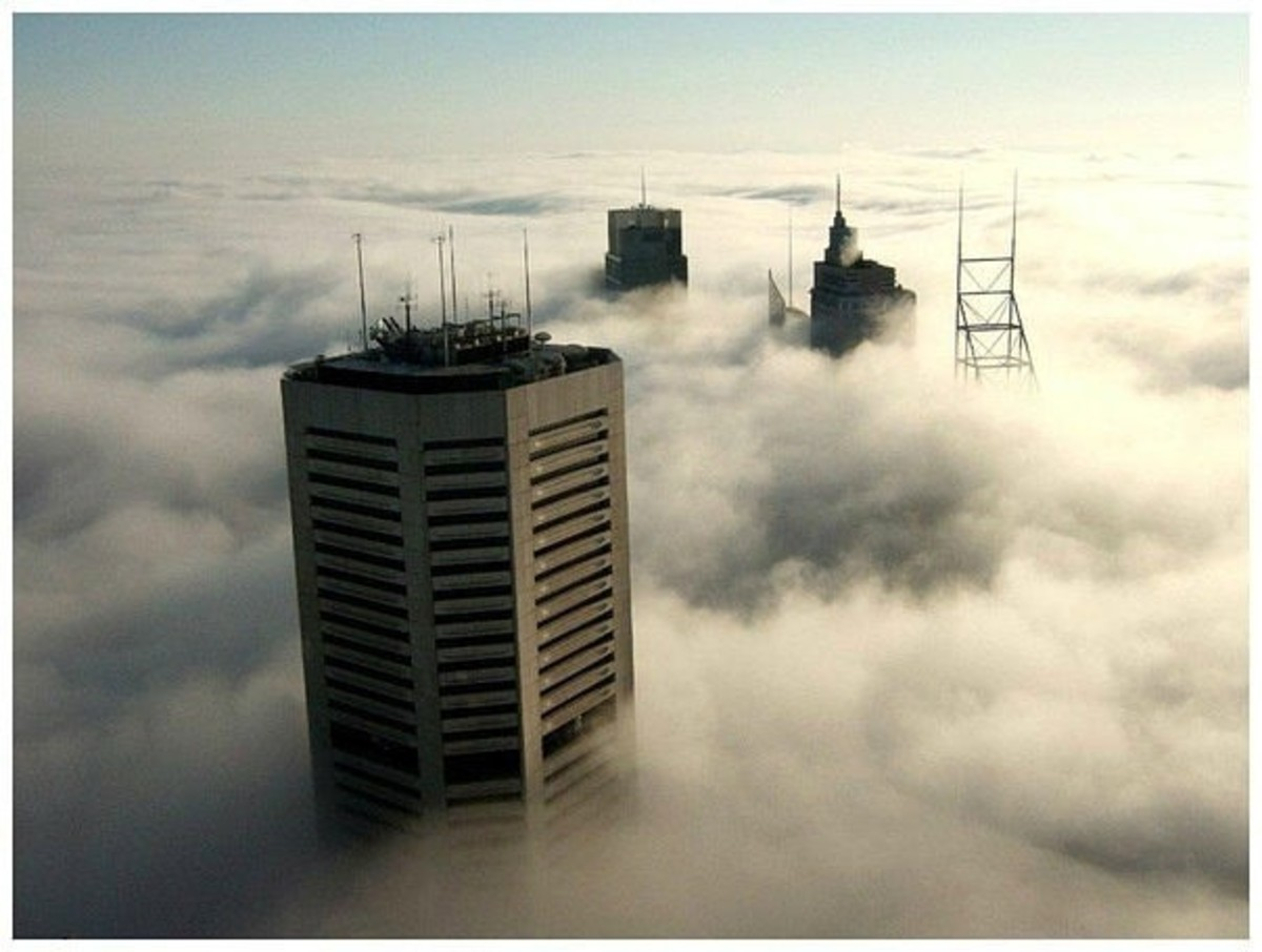 Heavy fog in Sydney, which enveloped the whole city.