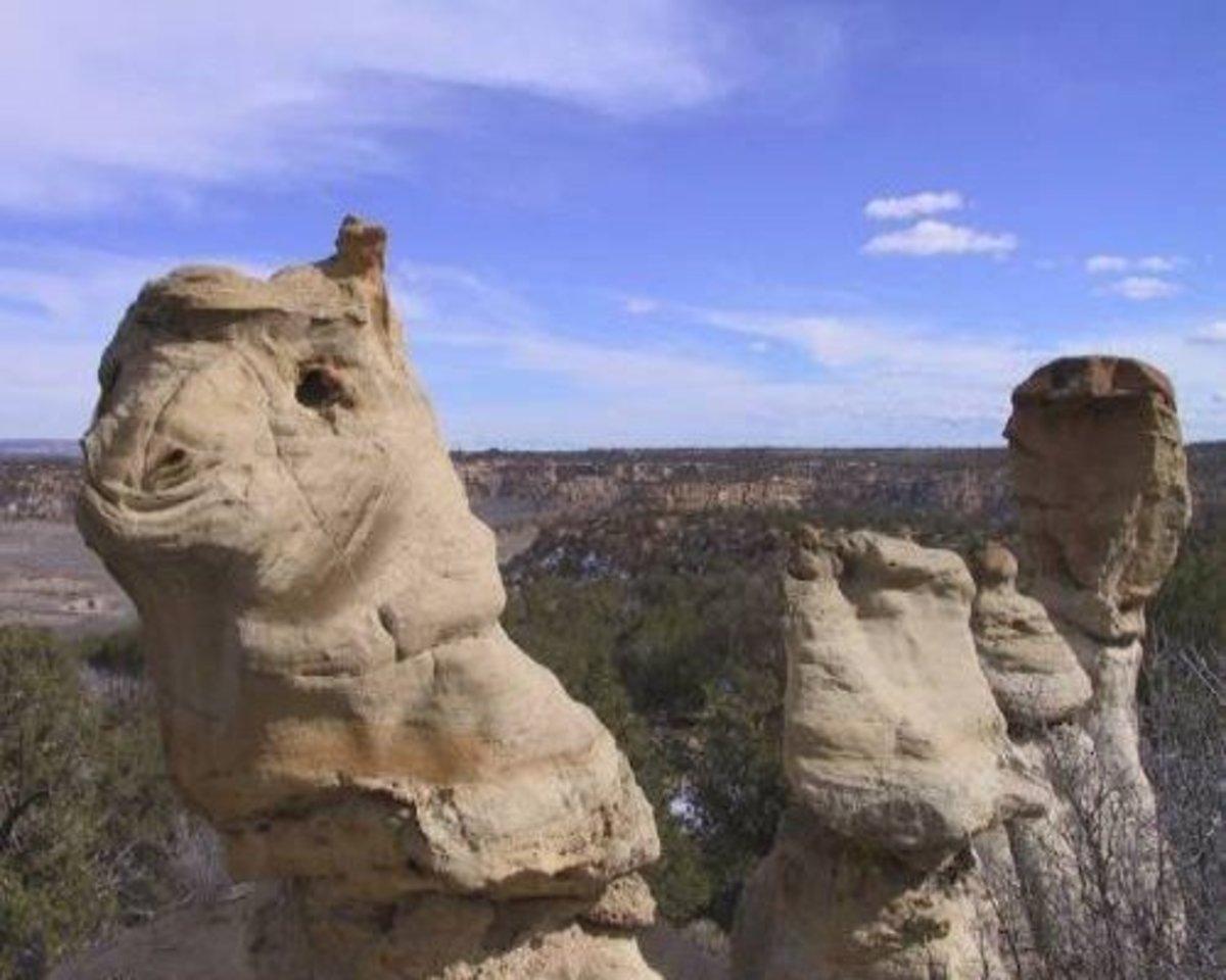 Camel rock II