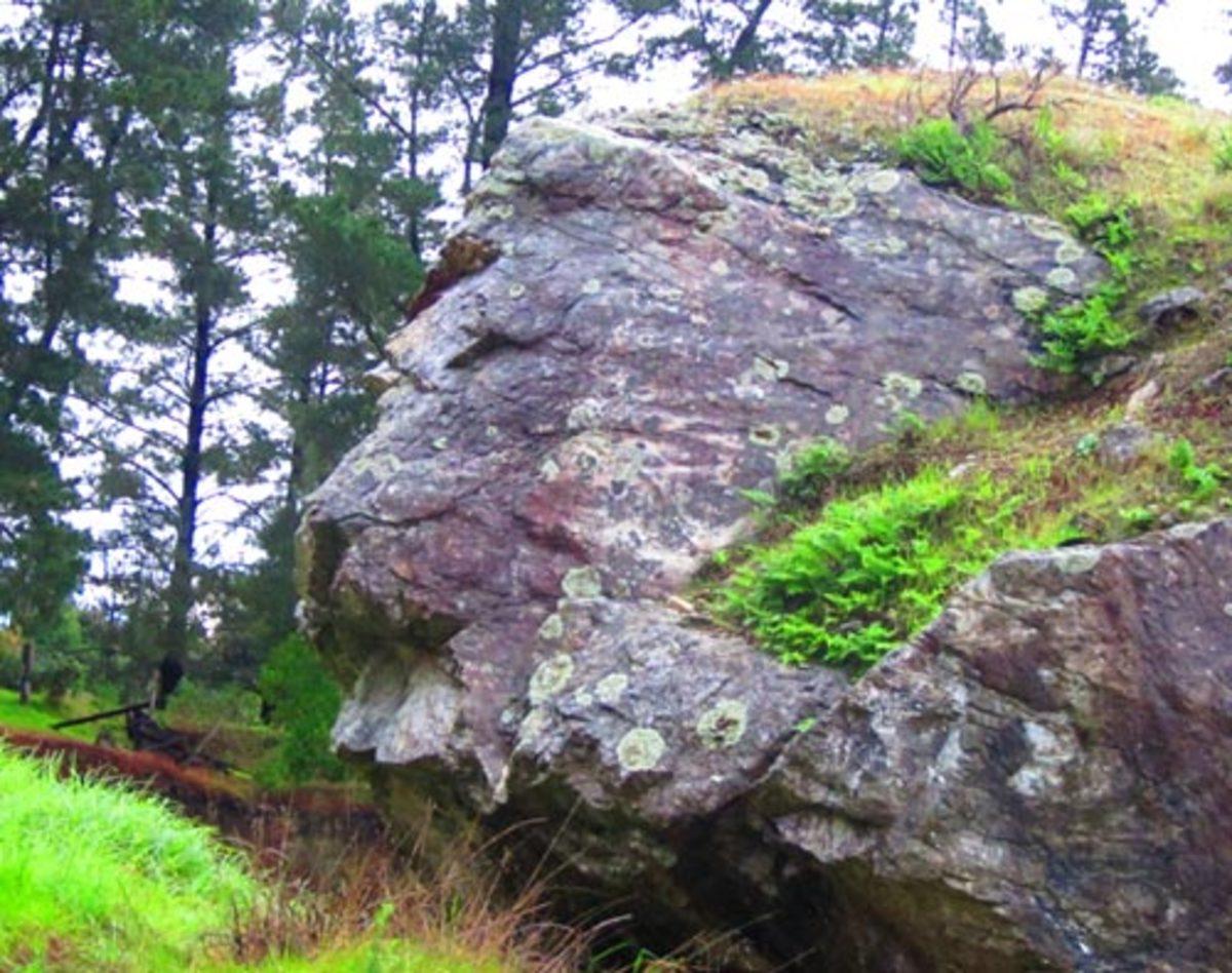 Lion's head rock