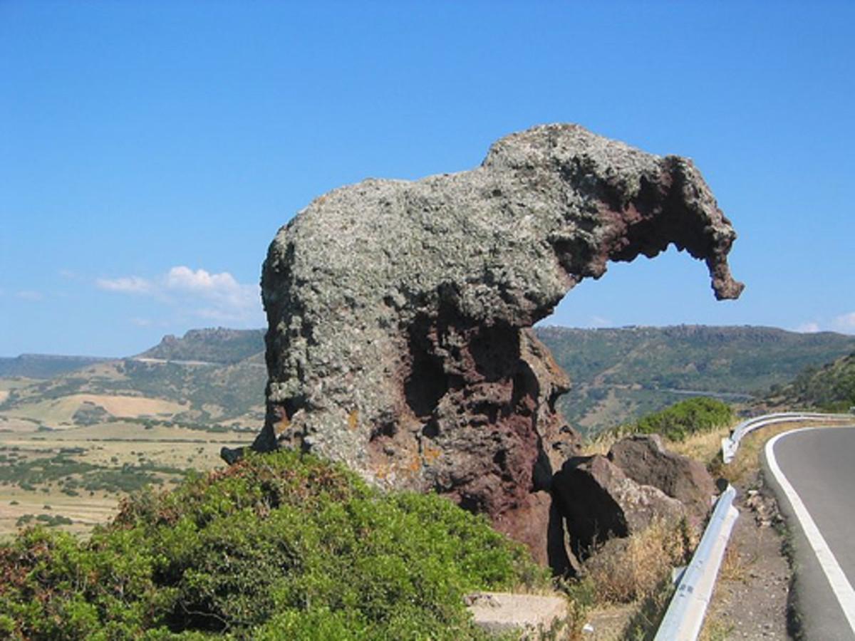 Elephant rock II
