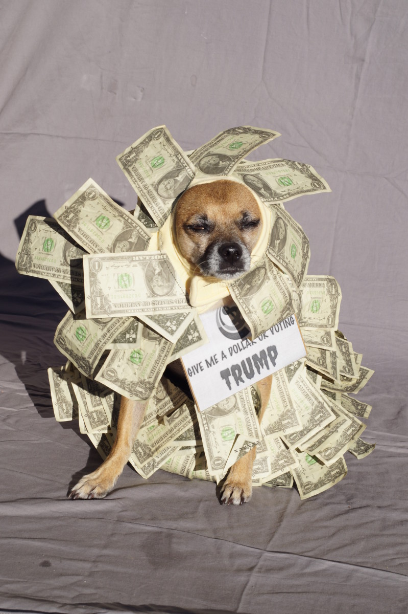 Give me a dollar or I vote Trump