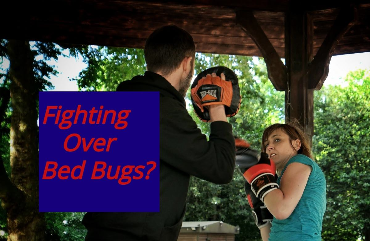 Bed Bug Stress Impacts How Men and Women Provide Support to Their Partner