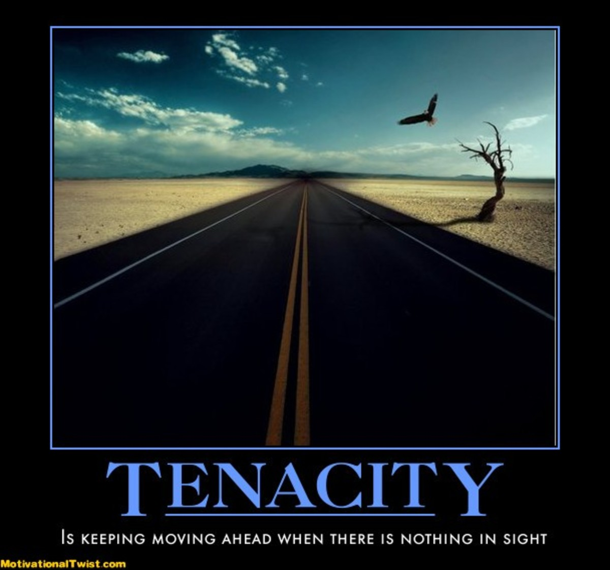 How can we show tenacity in the face of adversity?