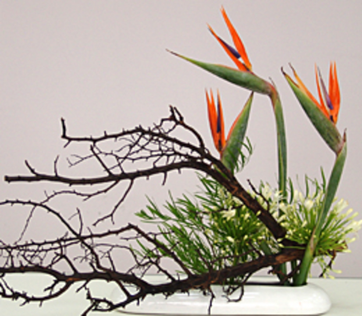 Japan of Flowers: Ikebana Philosophy