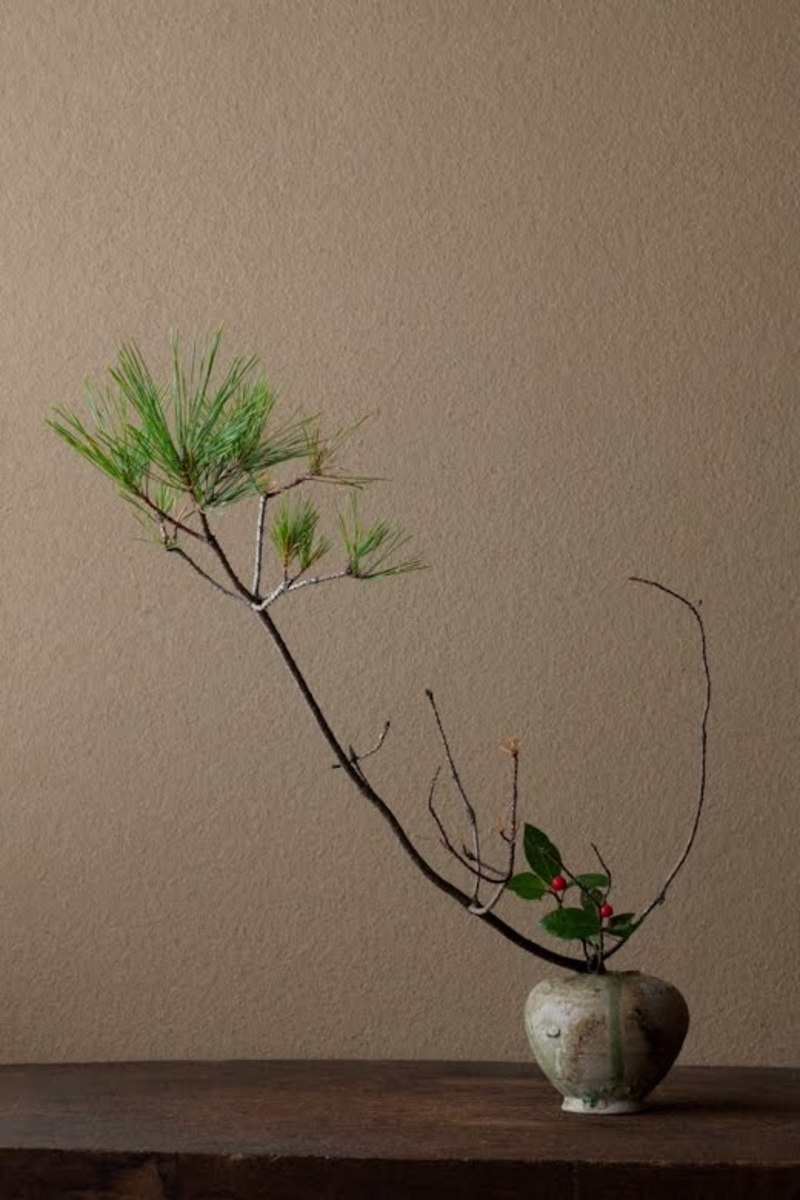 Ikebana with a pine branch