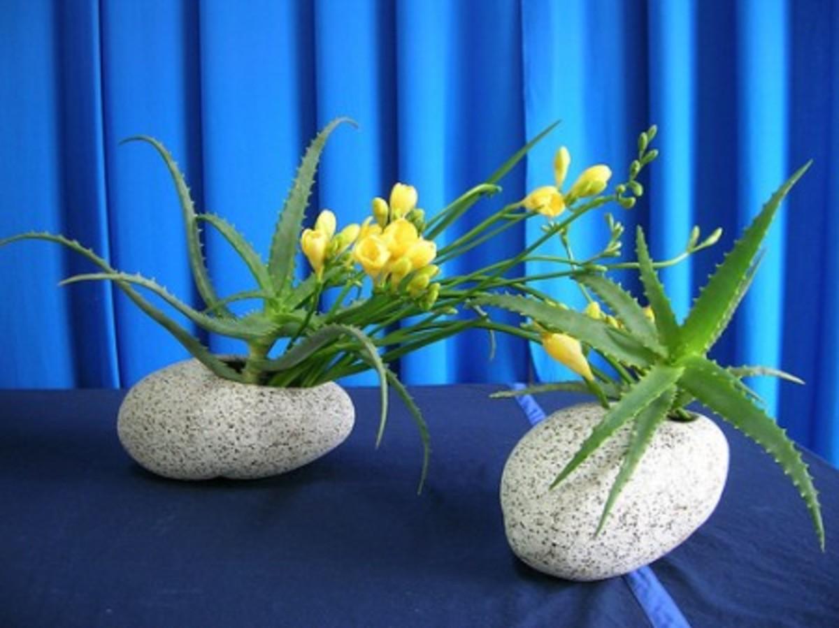 Two ikebana