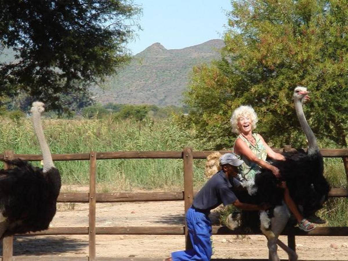 Maasai Ostrich Farm, Kenya