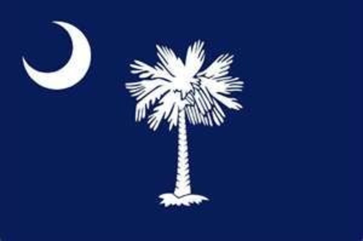 South Carolina's State Flag