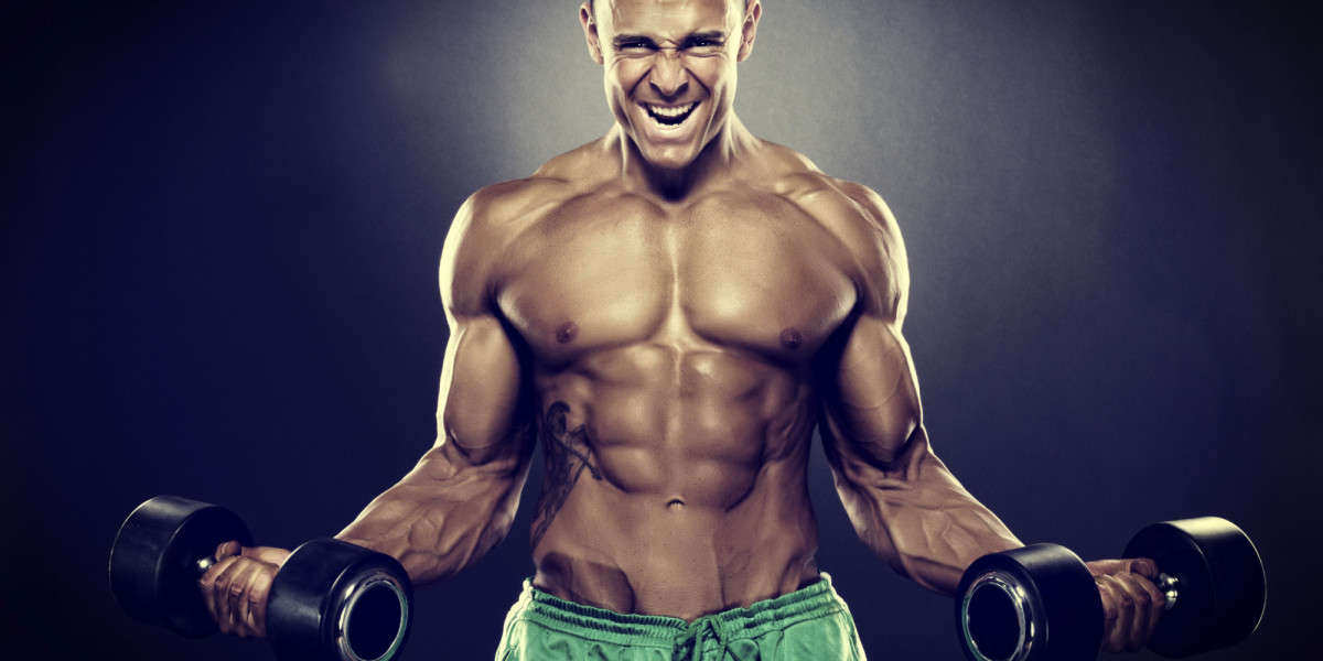 training-for-ectomorphs