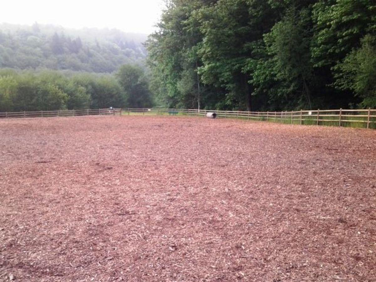 Mukilteo Dog Park Play Area