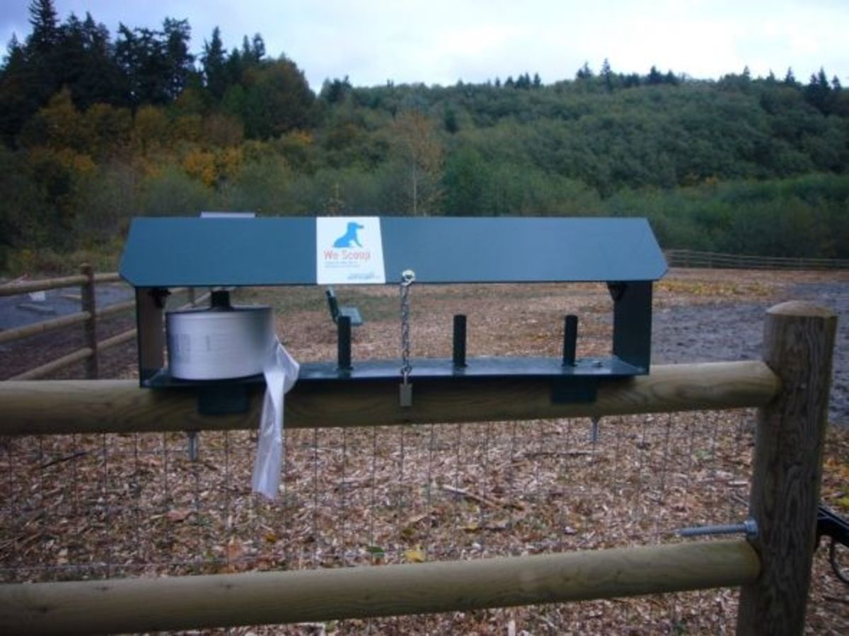 Clean-up Dispenser at the Mukilteo Dog Park