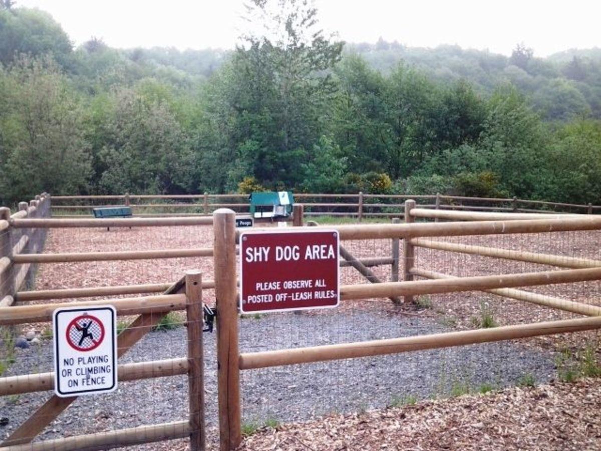 Mukilteo Dog Park Shy Dog Area