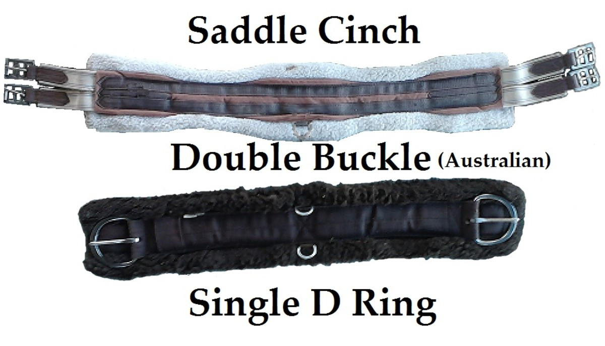 Western & Australian Saddle Cinch