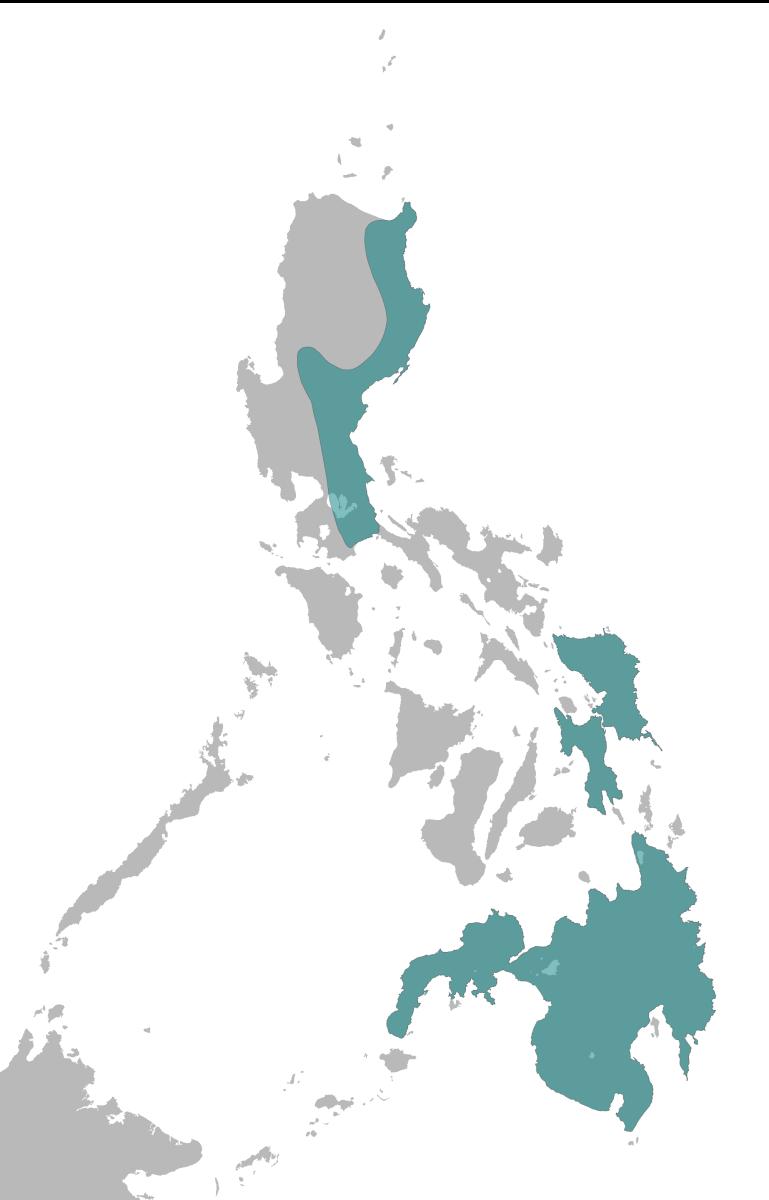 Philippine Eagle Range