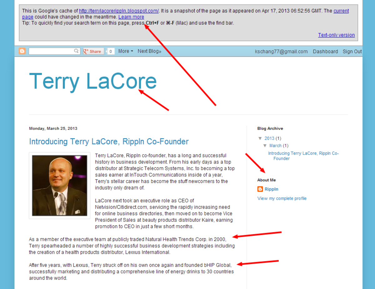 "Screenshot of blog designed as profile of Terry LaCore, co-founder of Rippln. This blog was created, then deleted by user ""rippln""."