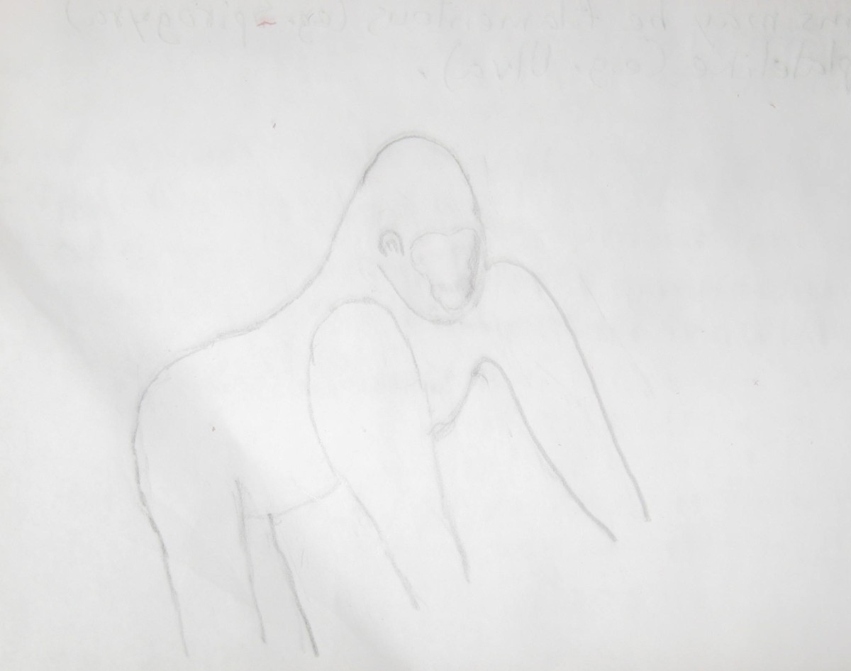 Gorilla Hand Drawing