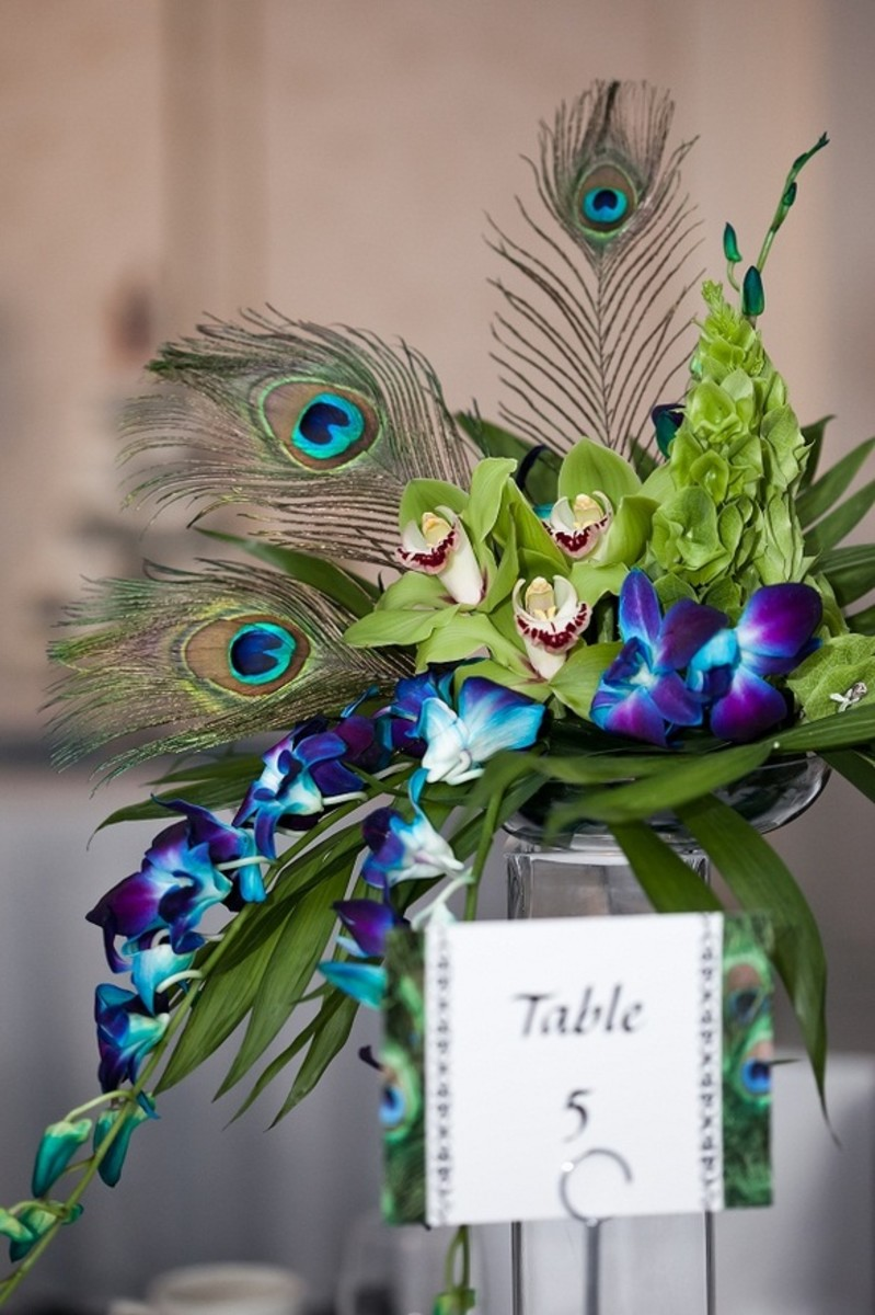 Peacock Themed Wedding Ideas