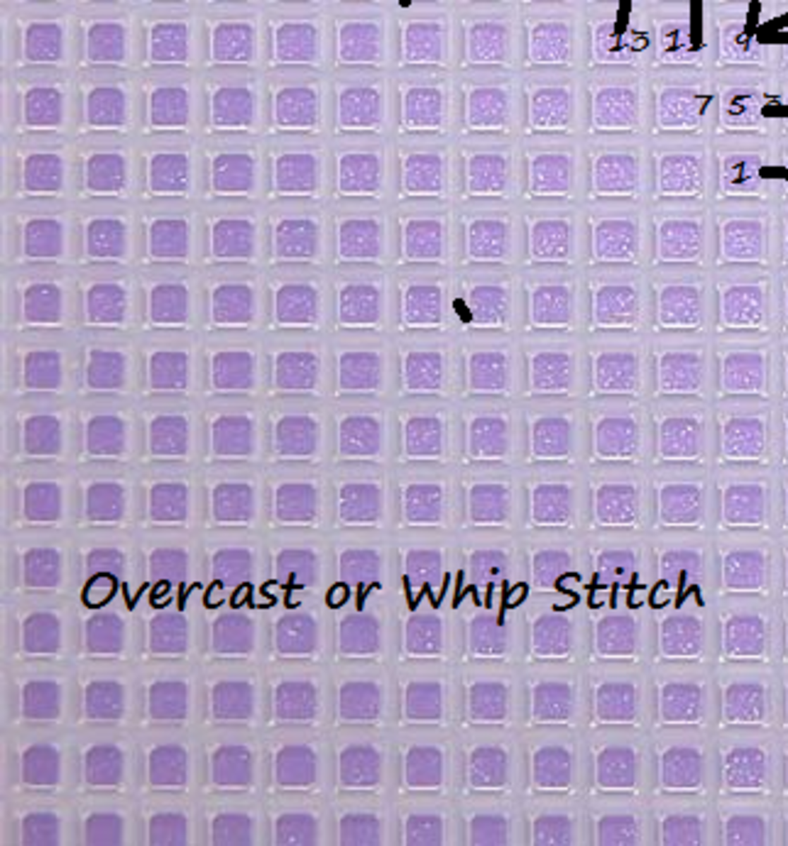 Overcast or Whip Stitch