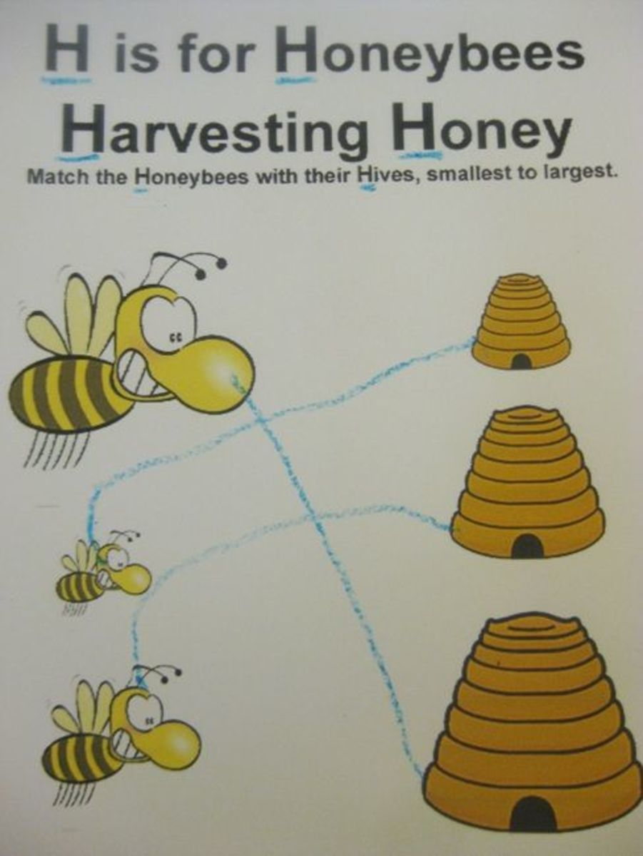 h is for honeybees harvesting honey alphabet activities for kids