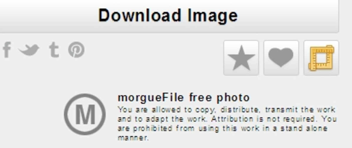 Morguefile Free Photo License