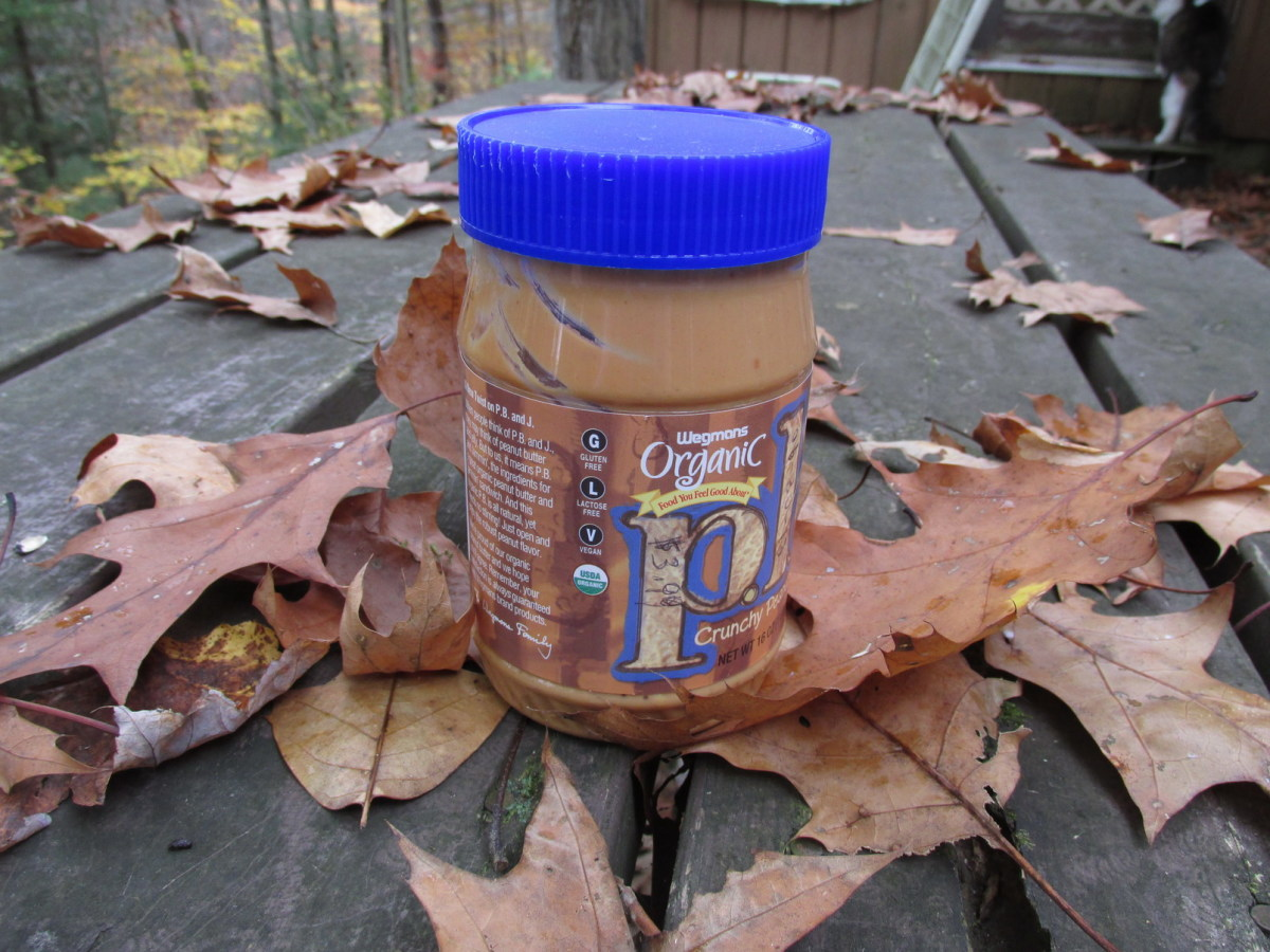 Peanut Butter is okay to give to wild birds.