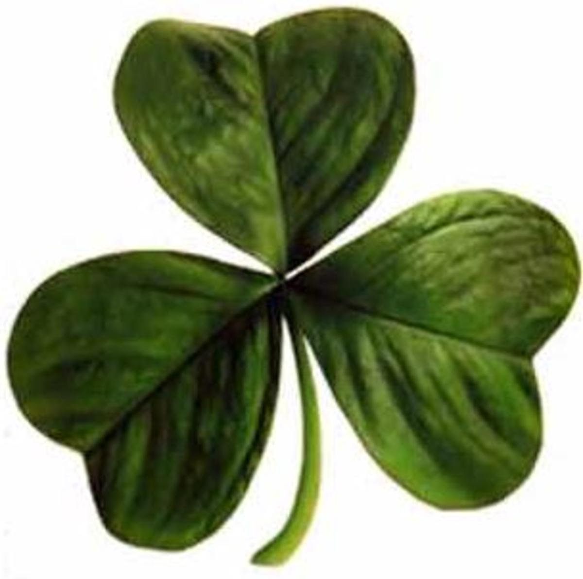 The famous Irish Clover, symbolising the Irish people across the world.