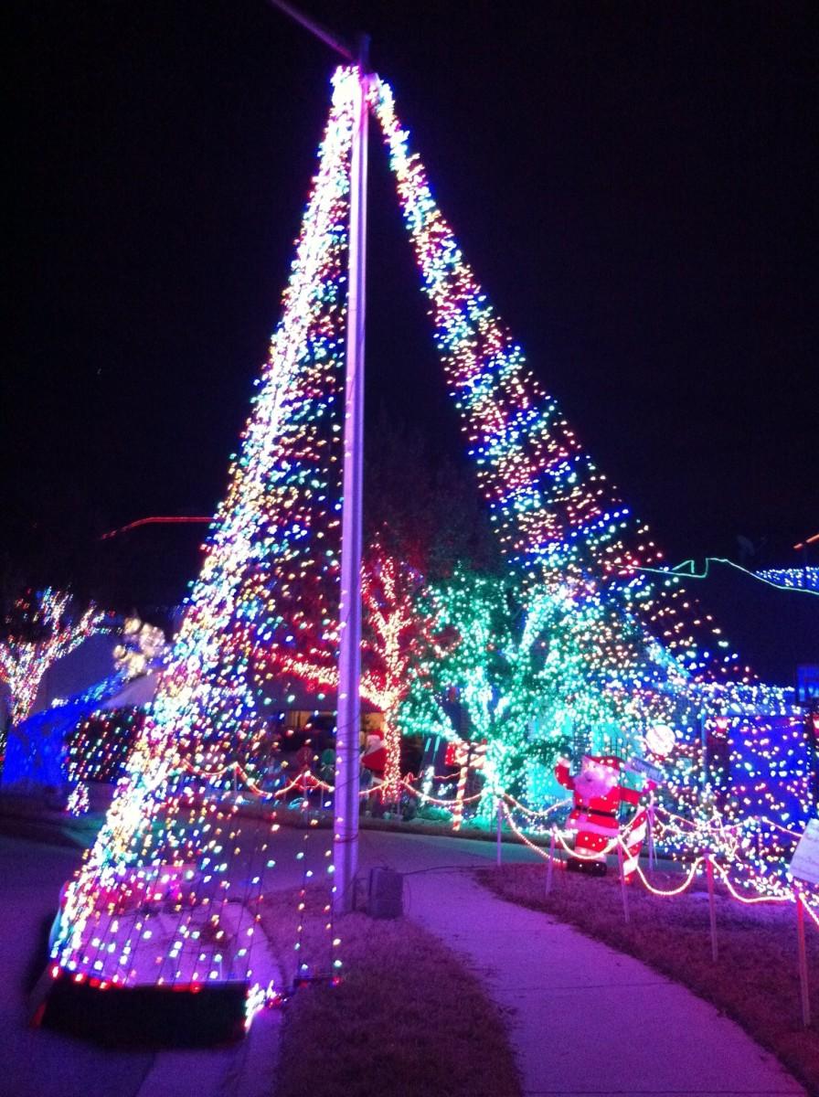 Walk under the tree!